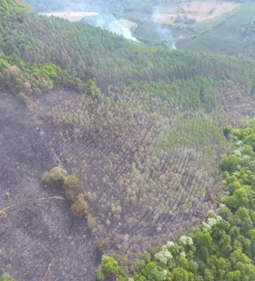 Matéria da Rádio Cultura FM sobre incêndios é veiculada pela RBS TV e Jornal Hoje da Rede Globo.