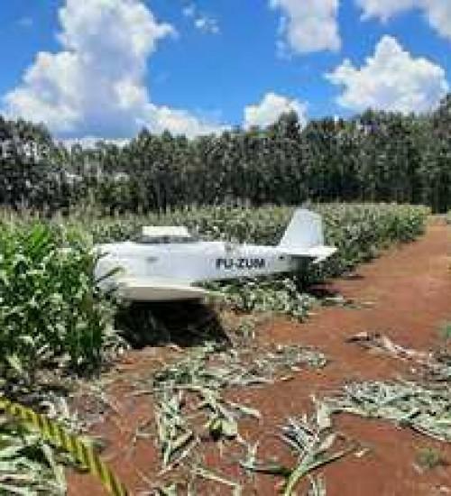 Avião faz pouso forçado em lavoura de milho em Concórdia (SC).