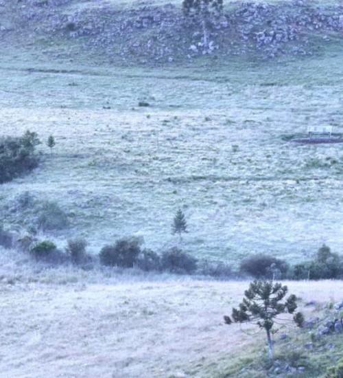 Geada muda o amanhecer deste domingo na Serra Catarinense.