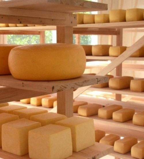 Produtores de queijo artesanal podem aderir ao selo arte e comercializar o produto.