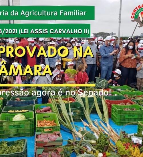 Câmara aprova medidas de auxílio a agricultores familiares.